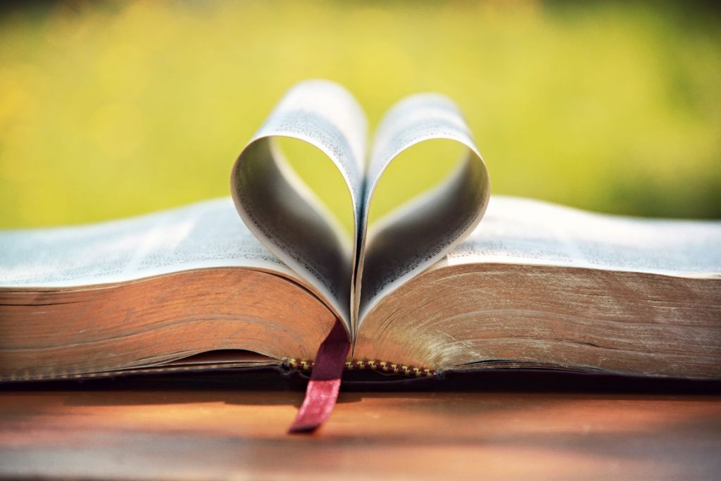 Love About The Bible